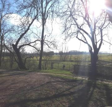 Weideland met Landbouwschuur en mogelijkheid tot bouw van een woning, 9931 TG Delfzijl (Niederlande), Bauernhof